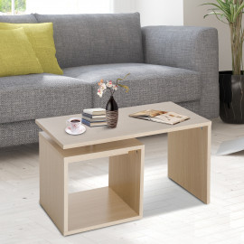 Table Basse Contemporaine IWACO Bois